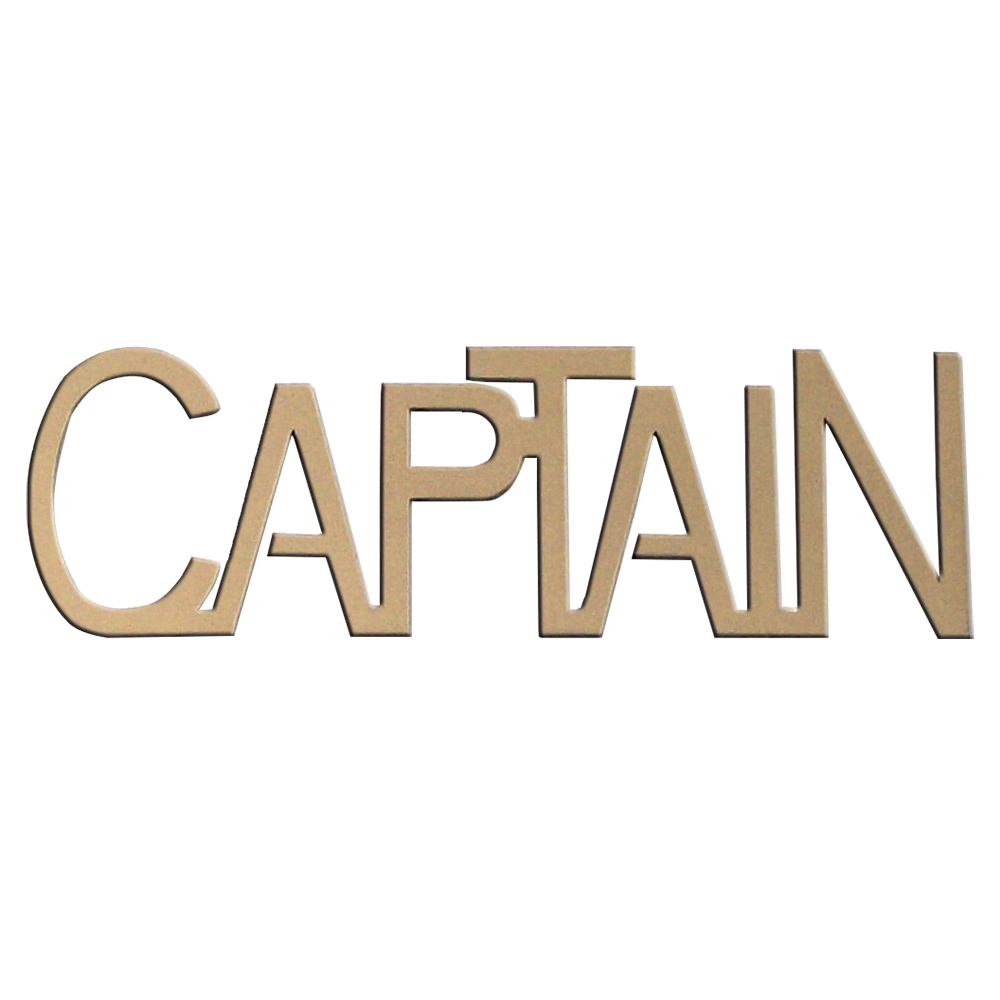 GOLDTONE TSA METAL CAPTAIN CREWTAG